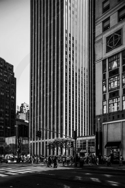 New York City - Anna B Gregorczyk (1)